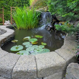 Perfect Ponds can design and build a pond for you just like this raised pond with stone edge