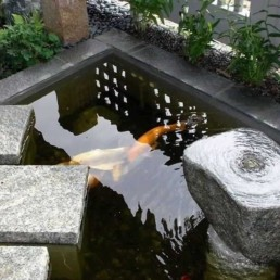 formal Koi pond