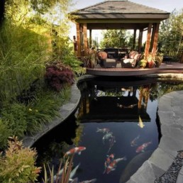 Koi pond + decking + pergola