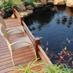 Koi pond + decking