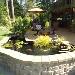 Raised Koi pond + timber decking