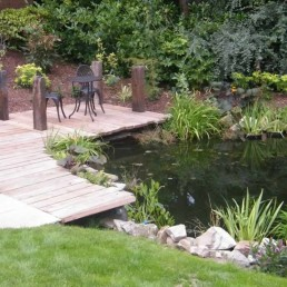 Timber decking + natural pond